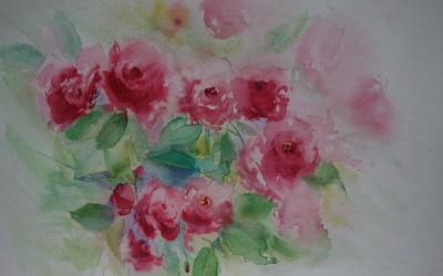 Róże z Przybrodzina