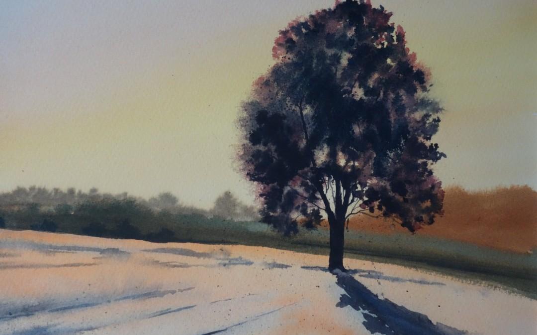 Samotne drzewo